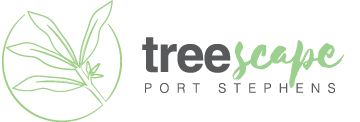 Treescape Port Stephens