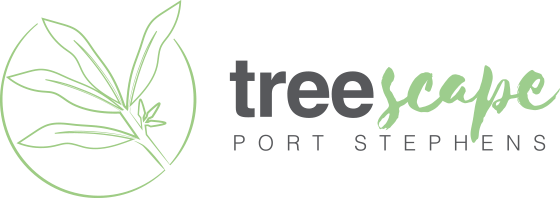 port stephens treescape