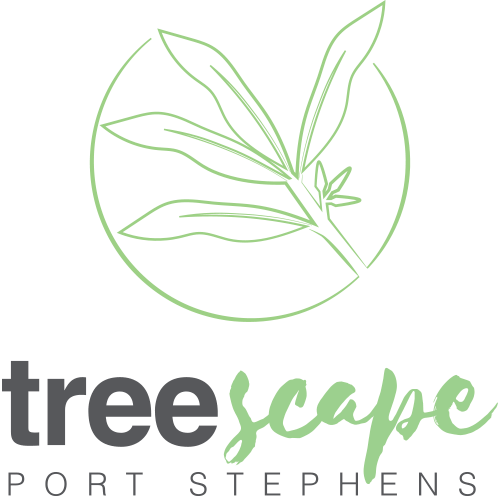 treescape social media